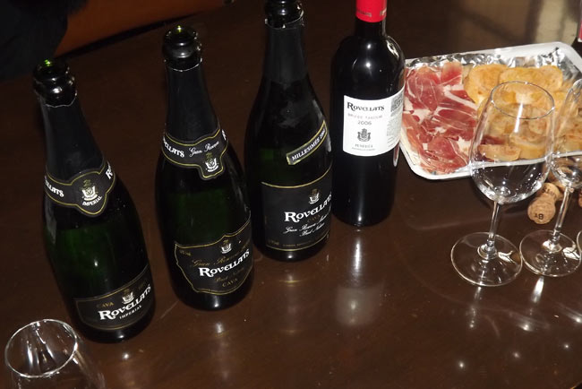 Penedes Wine and Gastro Tour