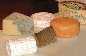 Various Spanish Cheeses