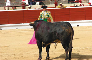 bullfighting-spain2